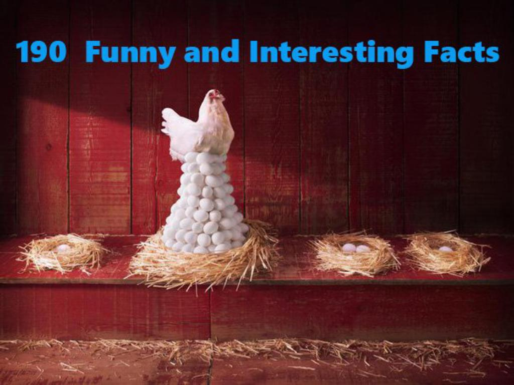 190  Funny and Interesting Facts