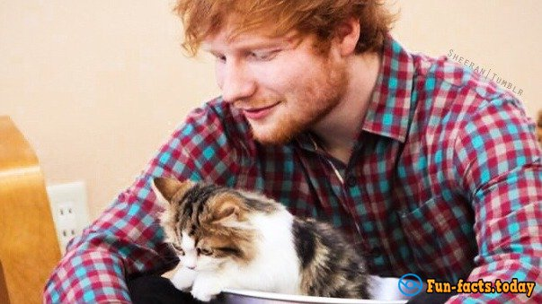 Awesome Facts About Ed Sheeran