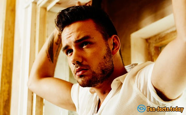 Interesting Facts About Liam Payne