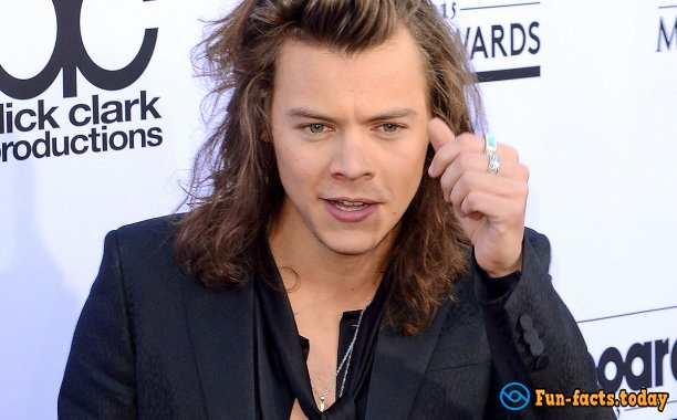 Interesting Facts About Harry Styles