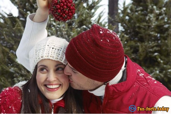 Amazing Facts About Mistletoe