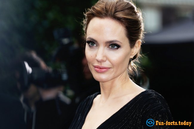Awesome Facts About Angelina Jolie