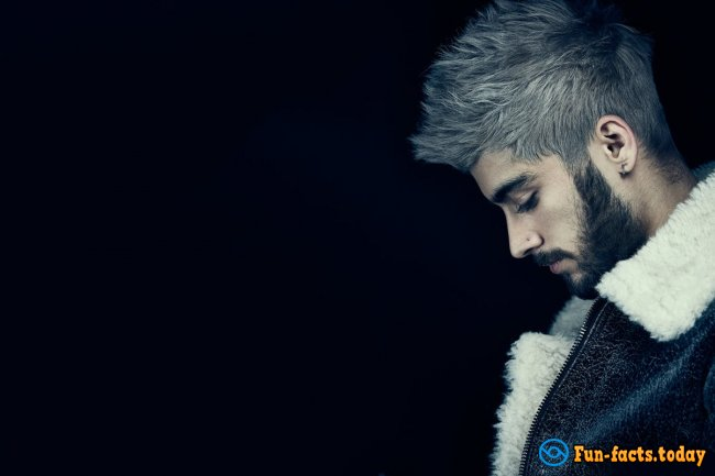 Amazing Facts About Zayn Malik