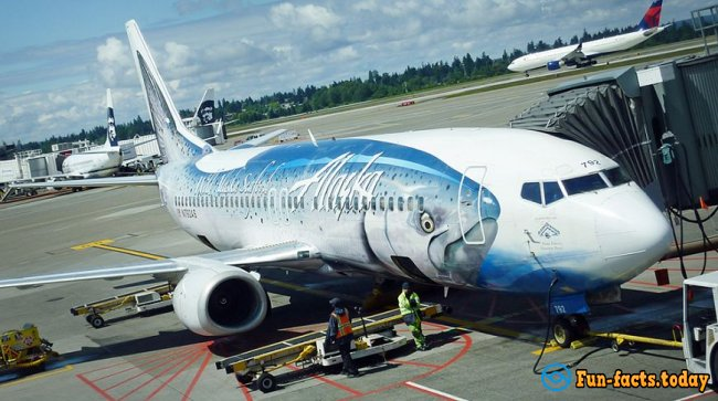 Fun Flying: the Funniest Planes in the World