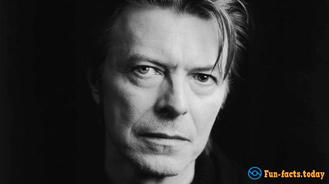 Interesting Facts About David Bowie