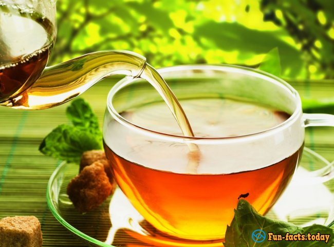 Interesting Facts About Green Tea