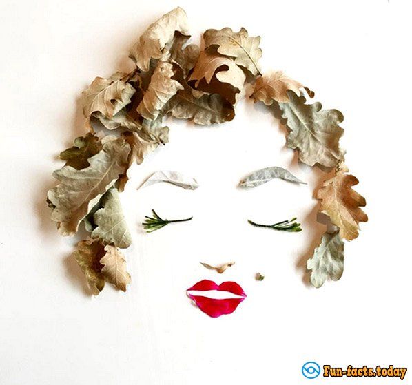 Mother Creates From Flowers and Leaves Fabulous Collage for Her Children