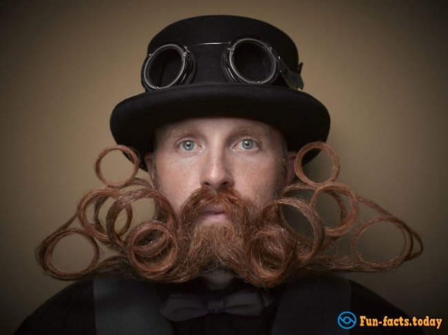 10 Incredibly Hairstyles for Beard and Mustache on a Man's Beauty Contest