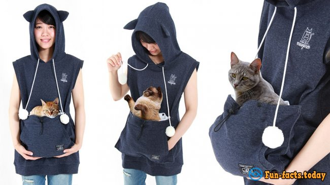 Now, He Is Always With You: In Japan Come Up Clothes with Carrying For Cats