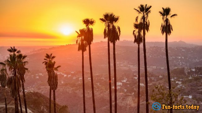 Why Los Angeles is the Best City in the World: 15 Photo Proofs