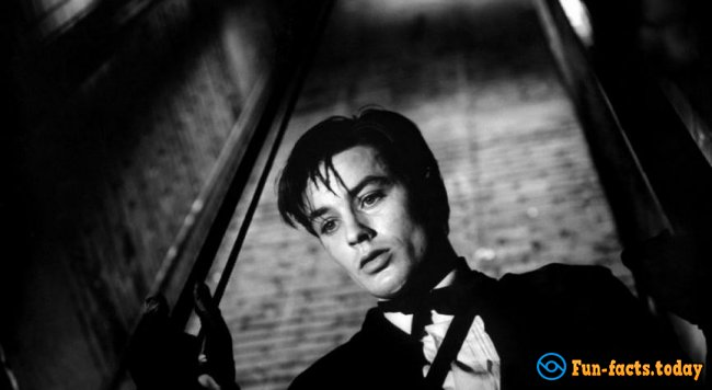 Sex Symbol Of French Cinema: Most Interesting Facts About Alain Delon Which You Didn't Know