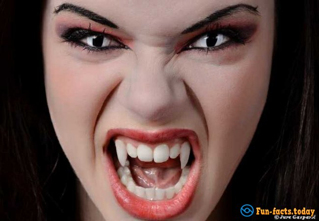 Facts about Vampire History