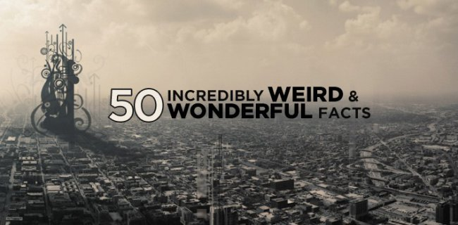 50 Incredibly Weird & Wonderful Facts